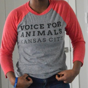 Model flexing muscles repping Voice For Animals KC in a cool gray baseball tee with red sleeves